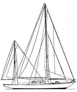 Alcor-8