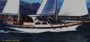 Belliure-50MS-1