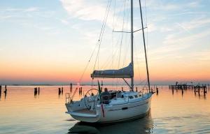 Italia Yachts 10,98 (8)